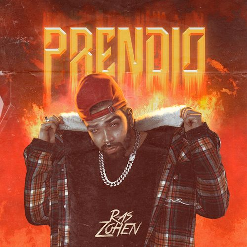 PRENDIO Image